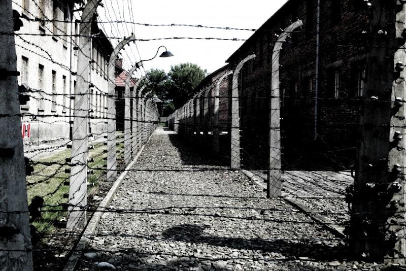 Auschwitz di simonetta65
