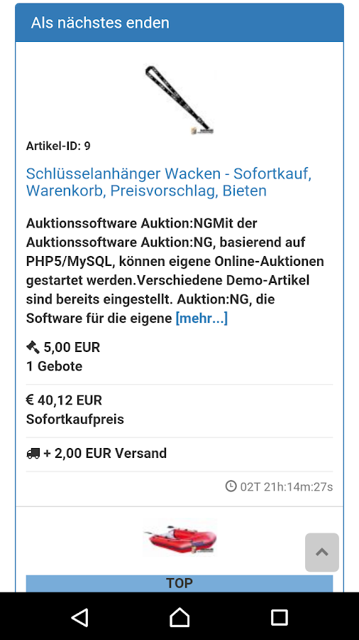 Auktion:NG online Auktion – Screenshot