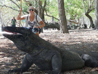 travel with mom to see the komodo dragons in indonesia