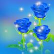 Valentino Bule Rose Love APK