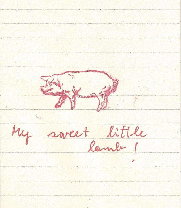 stilinovic my sweet little lamb !