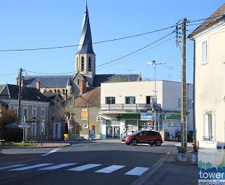 locaux professionels à Puiseaux (45)