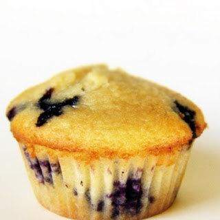 Low Fat Protein Powder Muffins Recipes