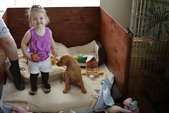 Photo: Kourtlyn loves Akela as much as Akela loves her!