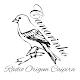 Rádio Origem Caipira for PC Windows 10/8/7