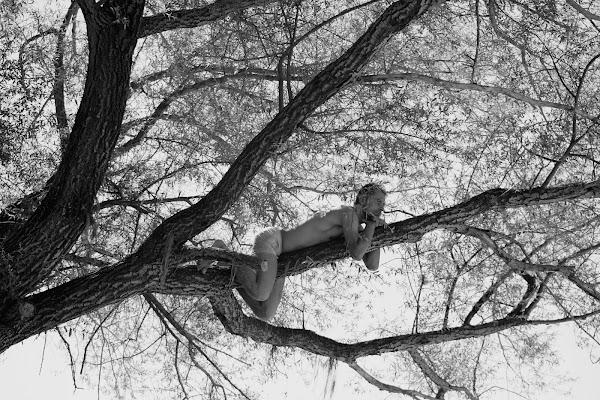 relax su un albero di irina sirbu