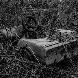 Resting Corvette  by Thurisaz Photography - Black & White Objects & Still Life ( outdoor, wheels, car, old, vintage, black and white, toy, object )