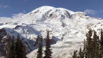 Photo: The top of the glacier is between the trees. Mt. Rainier!