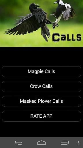 【免費運動App】Magpie & Crow Calls PRO-APP點子