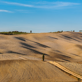 Field behind San Quirico D'orcia_Tuscany by Miroslav Havelka - Landscapes Prairies, Meadows & Fields ( tuscany, autumn, landscape, san quirico d'orcia, fields )