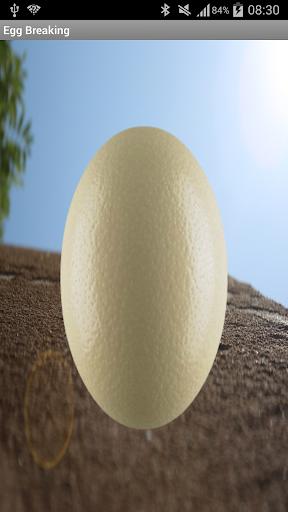 계란 속보