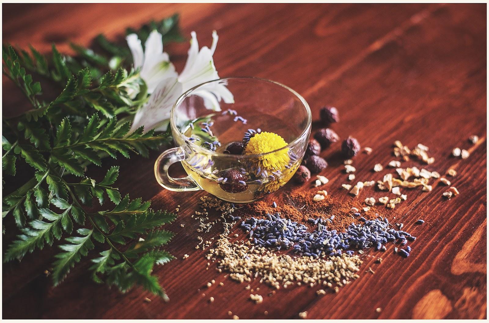 Tee in einer Tasse, angerichtet mit verschiedenen Kräutern und Blüten