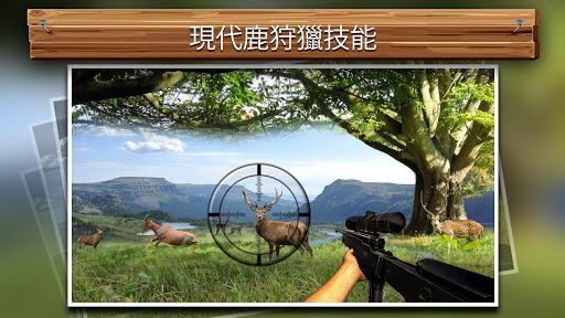 森林野生鹿狩猎2016年