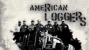 American Loggers thumbnail