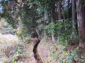 用水路の道