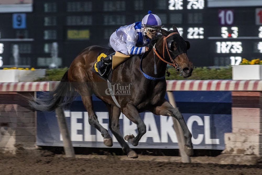 Rapalla (Stay Thirsty) se adjudica Handicap (1000m-Arena-HCH).