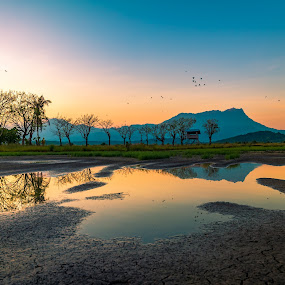 Kpg Sangkir I,Kota Belud,Sabah by Ted Khiong Liew - Landscapes Travel ( bird, water, reflection, mountain, trees, sunrise )