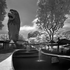 The Merlion on Sentosa by Emil Gonzales - Landscapes Travel ( merlion, sentosa, singapore )