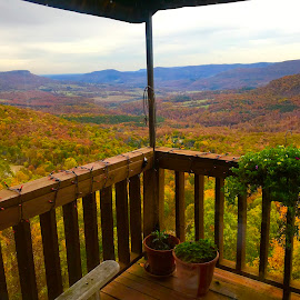 Table for Two by Jennifer  Loper  - Instagram & Mobile iPhone ( flowers, mountains, deck, restaurant, arkansas, valley, cliff house, autumn, trees, colors )