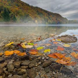 Colorful autumn by Bor Rojnik - Landscapes Waterscapes ( reflection, waterscape, autumn colours, autumn leaves, autumn, lake, landscape, colorful )