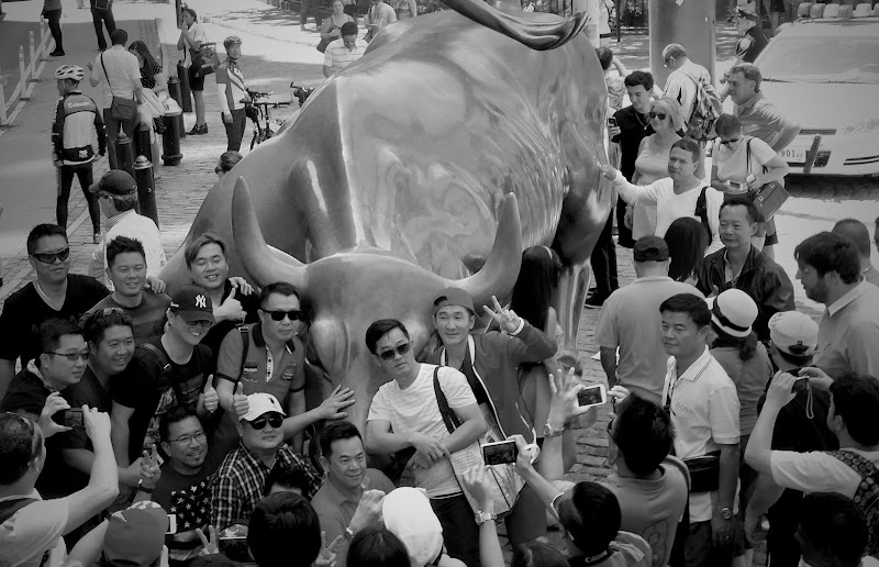 Selfie con il toro di annabus58