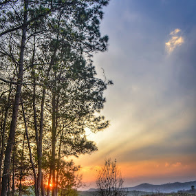 through the wood by Arubam Meitei - Landscapes Sunsets & Sunrises ( colourful, manipur, sunset, incredible manipur, dramatic sky )