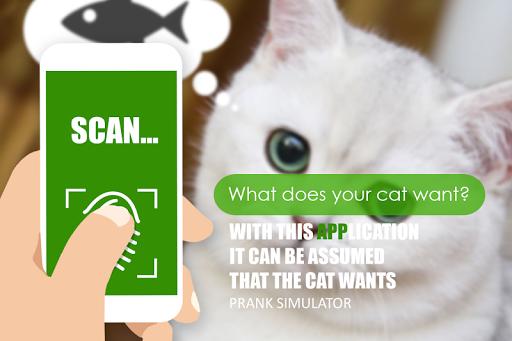 어떤 고양이 스캐너 농담을합니다