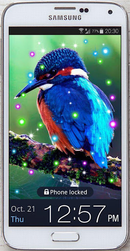 Birds World HD 2015 LWP