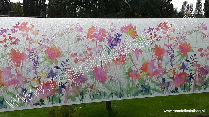 Raamfolie statisch flora / bloemen kleuren dcfix kopen?