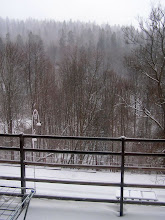 Photo: C4010002 Krynica - zdjecia z naszego balkonu