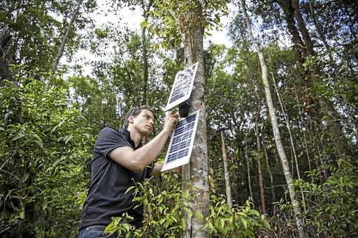 Topher White installing sensors made from old phones to monitor logging in rainforests.