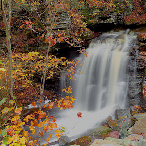 Falls on SGL- #13 by William Hamm - Uncategorized All Uncategorized ( william hamm,  )