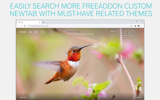Hummingbird Wallpaper HD Hummingbirds New Tab