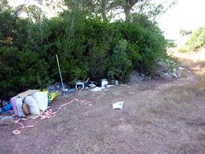 Photo: Fems abocats prop de l'entrada al camí de sa Boval