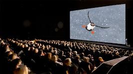 grote zaal waarin een vliegende papegaaiduiker op het scherm is te zien