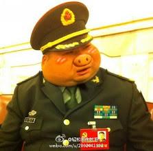 Photo: 轻松家朱时毛:可爱的少将