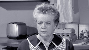 Aunt Bee's Invisible Beau thumbnail