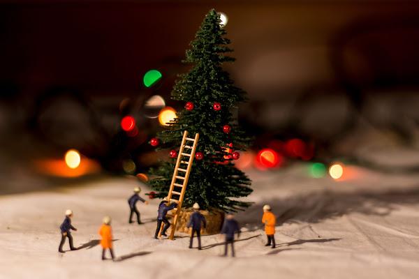 Preparativi per il Natale di Andrea Calò