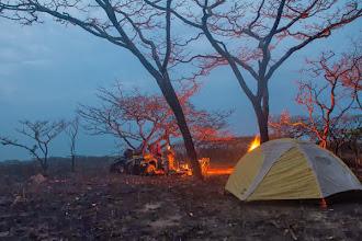 Photo: An evening in the wilderness Um final de tarde no mato
