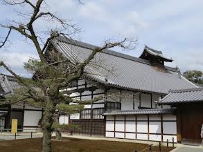 Photo: H3240273 Kioto