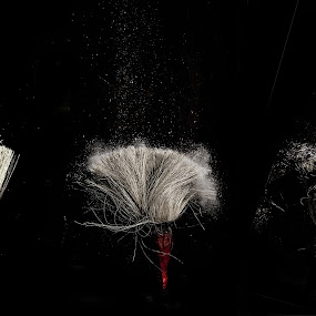 BRUSH by Suman Sengupta - Artistic Objects Other Objects ( raw, canon, high speed, brush, paints.drop )
