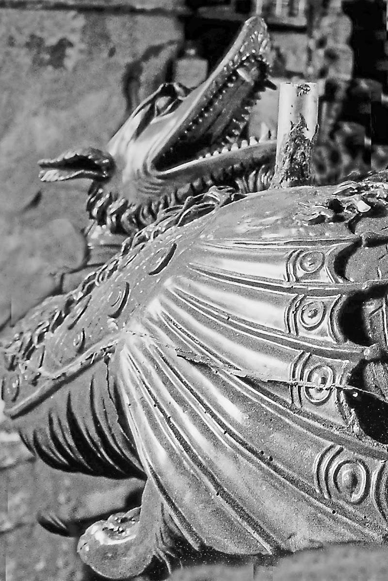 Il Drago Alato di cesare carusio
