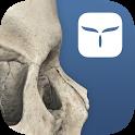 3D Skull Atlas icon