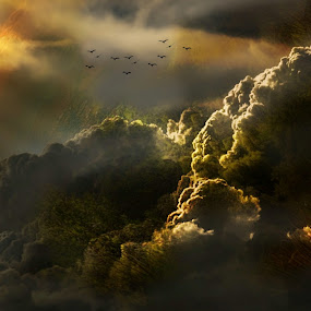 Above the clouds by Alexander Nainggolan - Landscapes Cloud Formations ( clouds formation, horizon, golden hour, ray of light, dark sky, clouds, skyline, landscape )