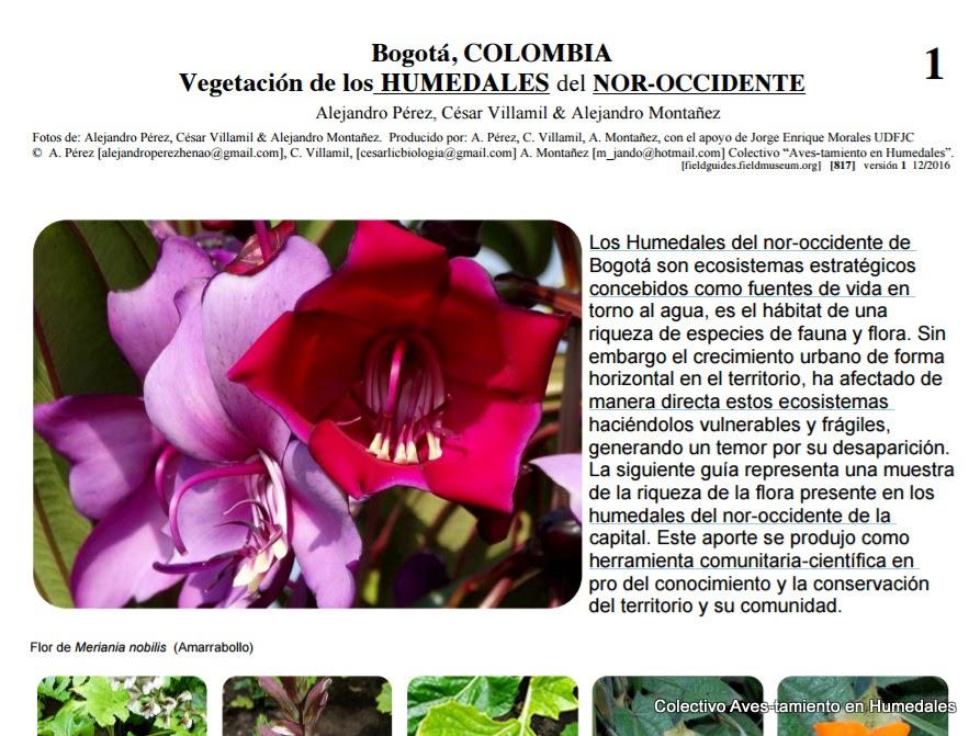 Guía vegetación