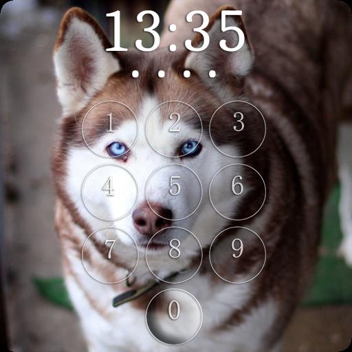 Husky Lock Screen
