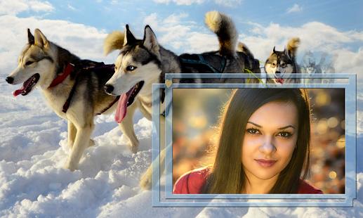 Animals Photo Frames - náhled
