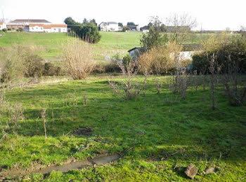 terrain à Nueil-sur-Layon (49)