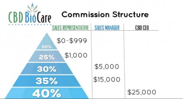 Image of CBD BioCare's Commission Structure