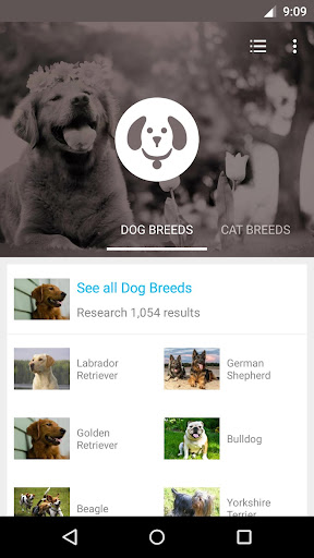 Pet Breeds - Find and Adopt